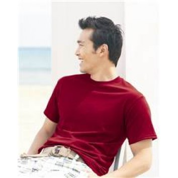 Hanes - ComfortBlend EcoSmart T-Shirt - 5170